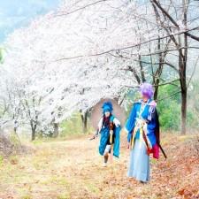 関東最大級!東秩父村「虎山弐千本桜」